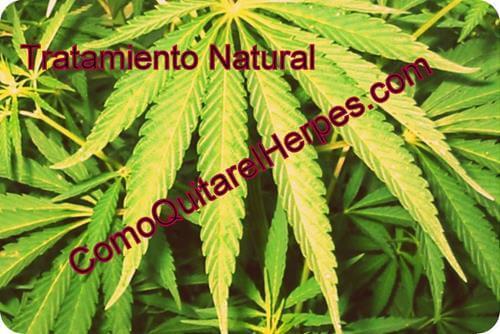tratamiento-natural-para-herpes-genital-78